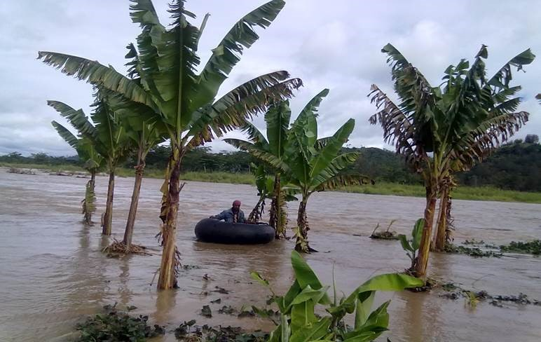 PNG to develop information systems for disasters.