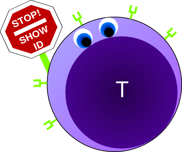 Showing post & media for Cell receptor cartoon.