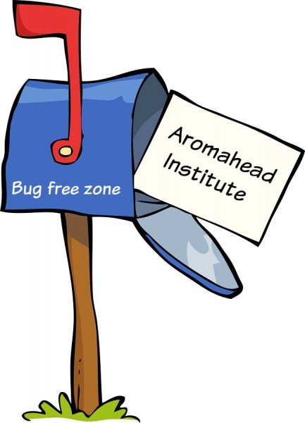 No bugs allowed! Here are some useful tips on how to keep those.