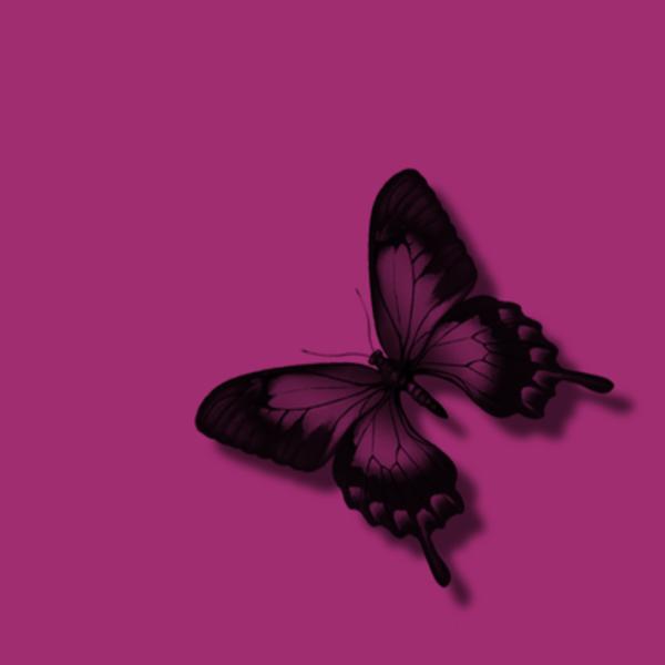 Pink Butterfly Black Glitter.