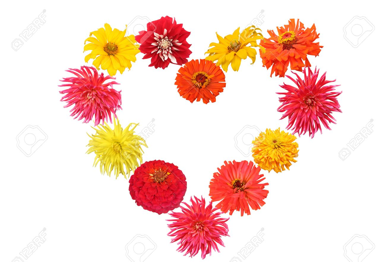 Heart Shaped Spring Flowers. Red. Orange. Yellow And Pink Dahlia.