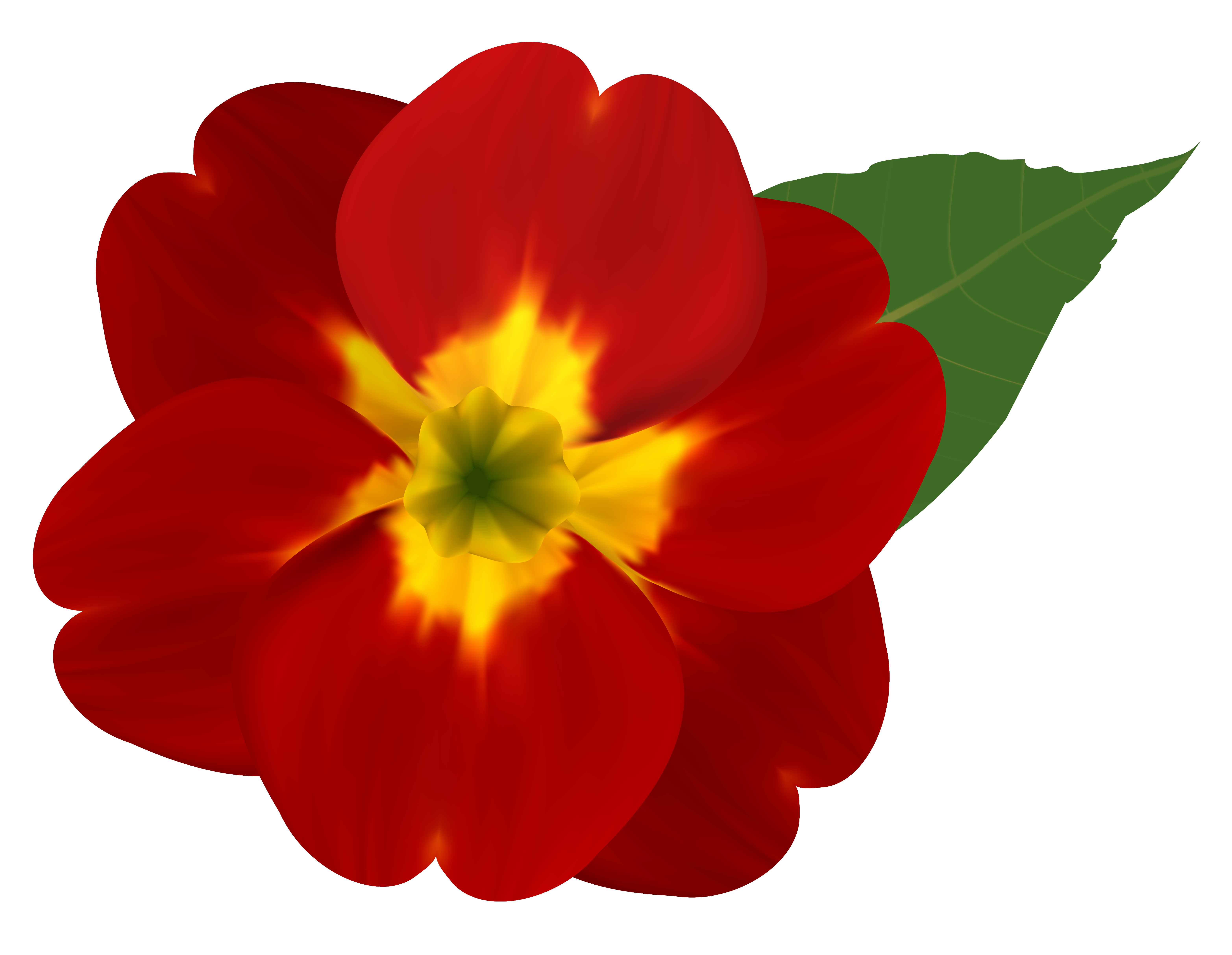 Red and Yellow Flower PNG Clipart Image.