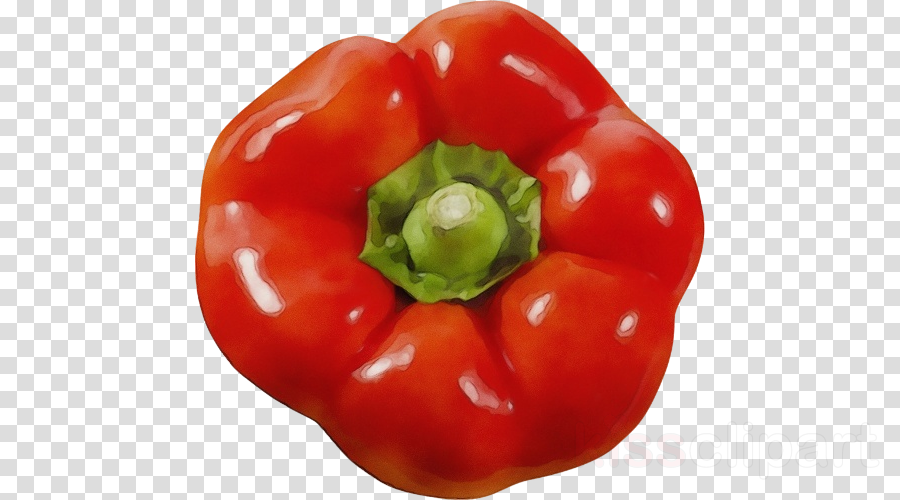 natural foods bell pepper pimiento red bell pepper bell.