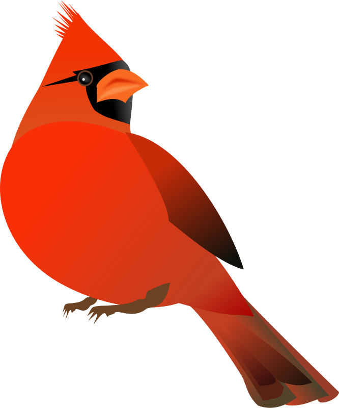Free Clipart: Red Cardinal.