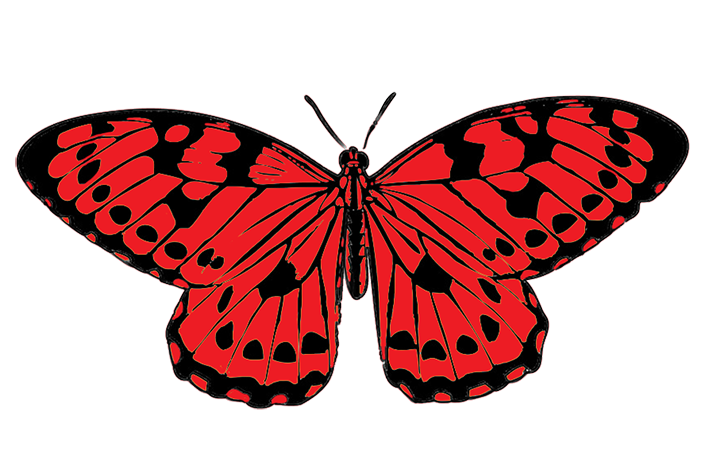 Red And Black Butterfly Clipart.