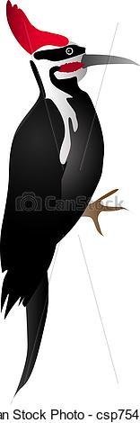 Vector Illustration of Woodpecker.