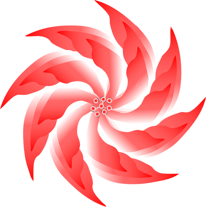 Free vector graphic: Flower, Red, Blossom, Bloom, Spiral.