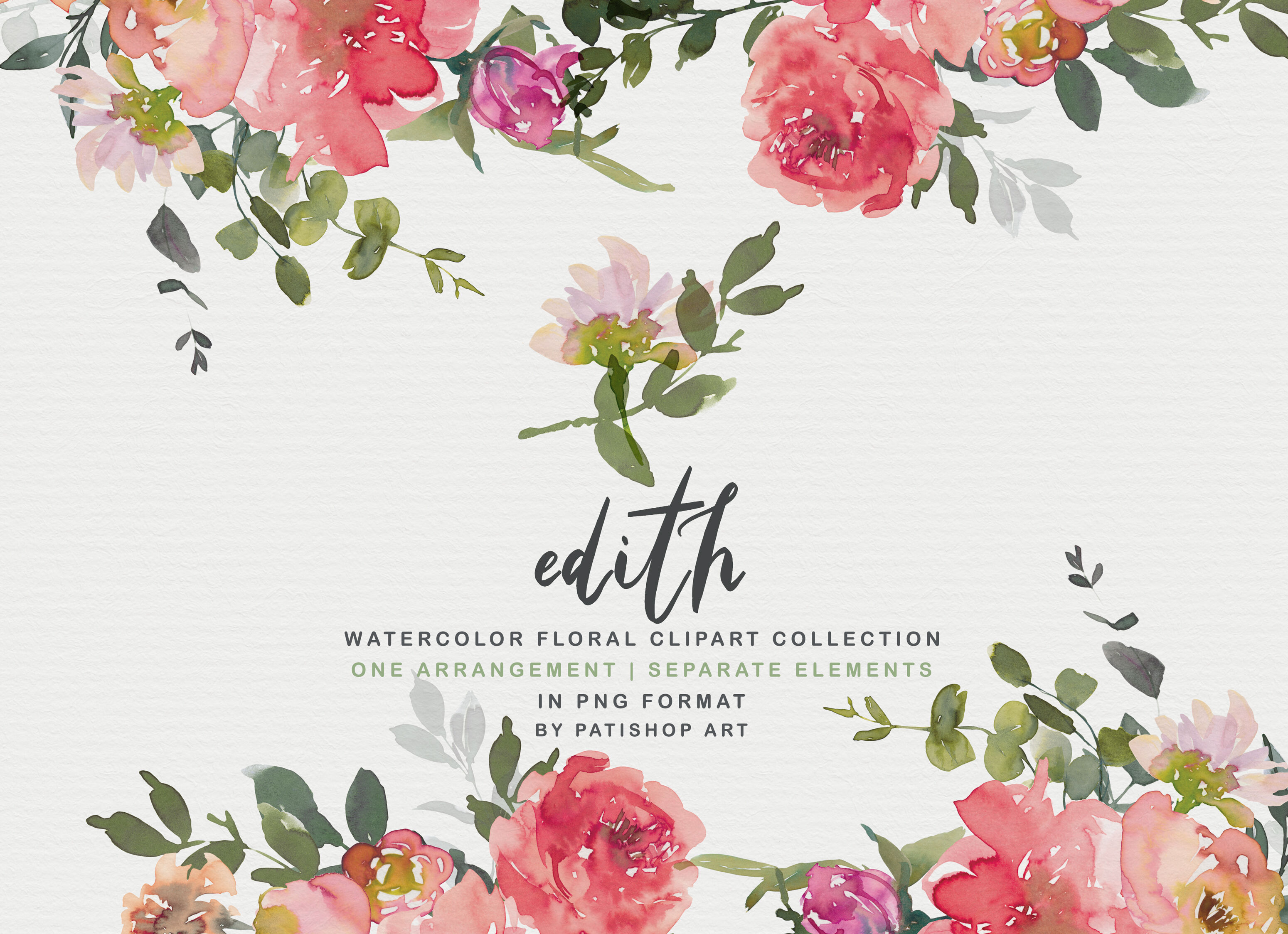 Blush Red Watercolor Peony Clipart Set By Patishop Art.