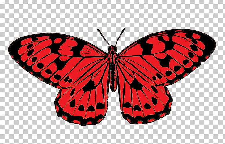 Butterfly Red PNG, Clipart, Arthropod, Brush Footed.