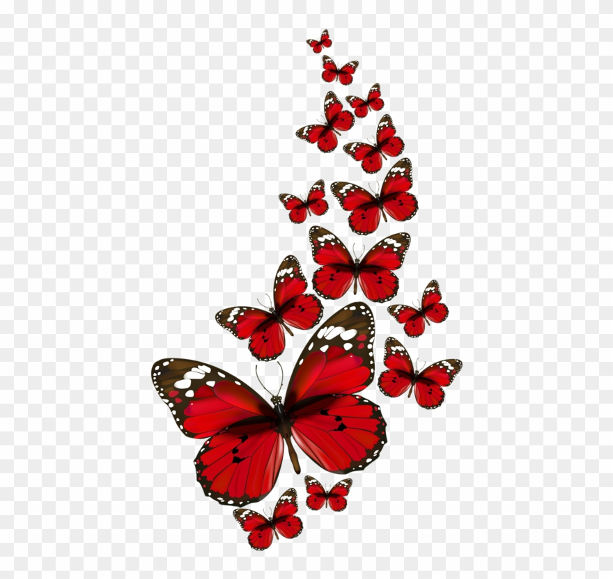 Papillons Red Butterfly, Butterfly Kisses, Butterfly.