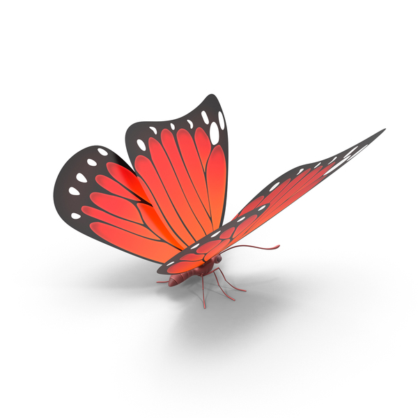 Red Butterfly PNG Images & PSDs for Download.