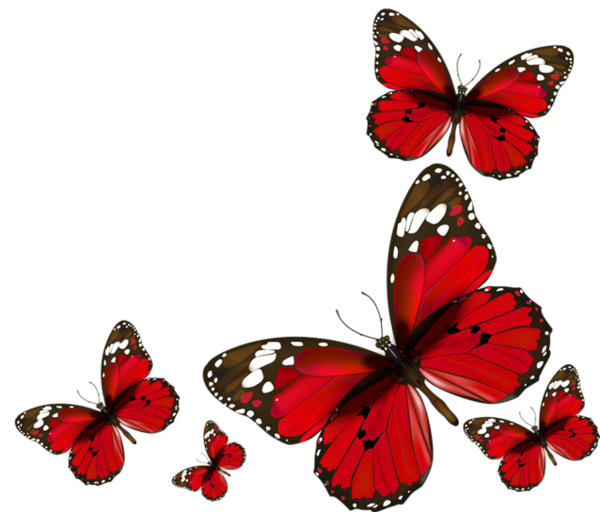 Red Butterfly PNG Image.