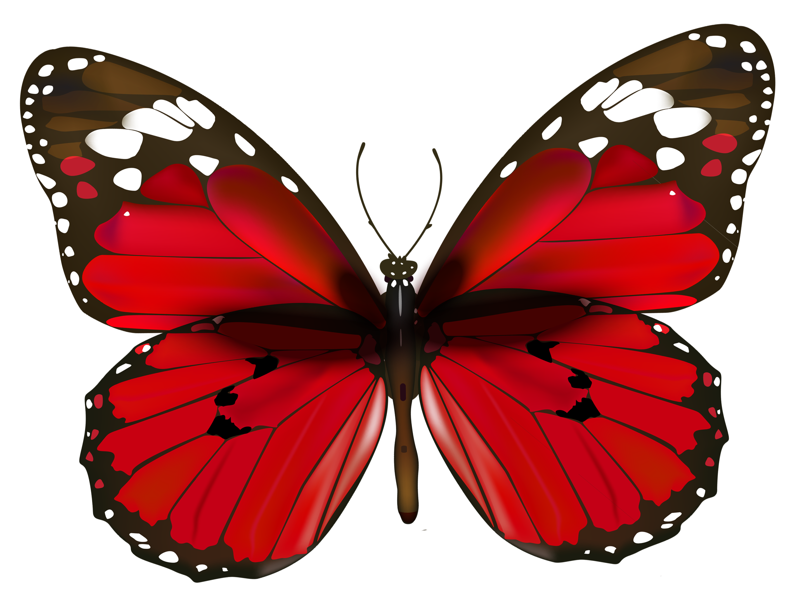 Red Butterfly PNG Clipart.