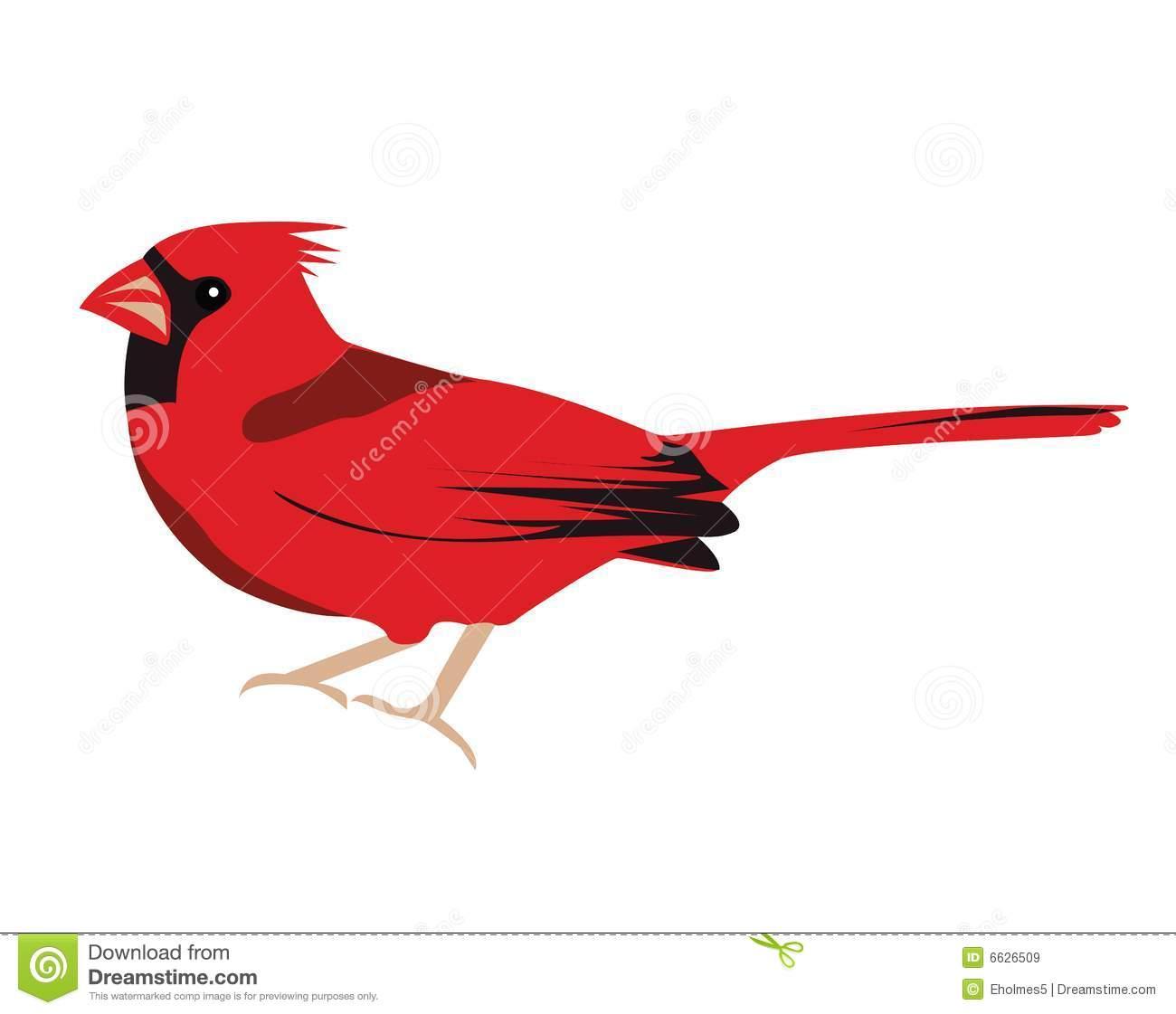 Cardinal Cartoon Clipart.