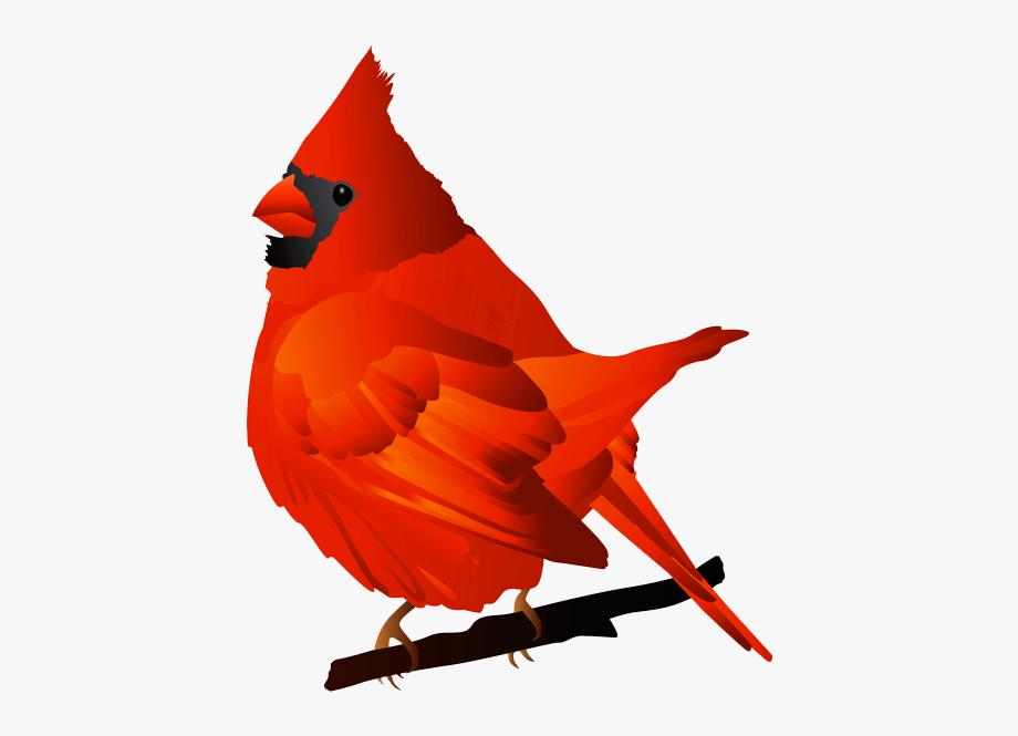Free Cardinal Clipart.