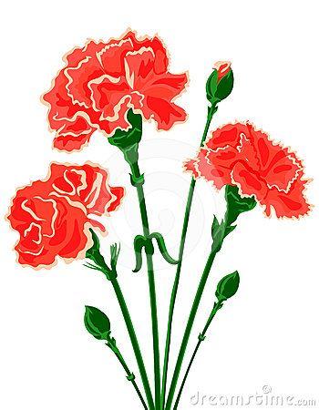 Red Carnation Clipart Carnation Flower Clip.