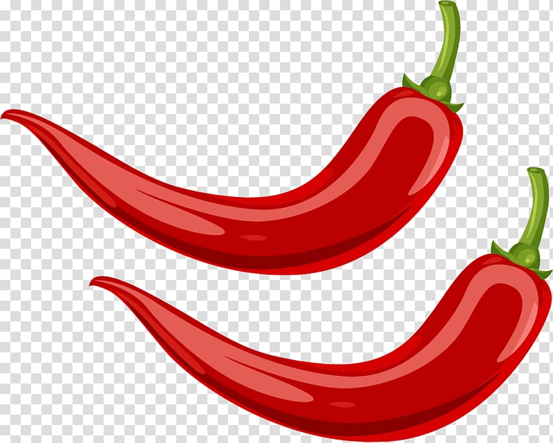 Two red chili illustrations, Chili pepper Cayenne pepper.