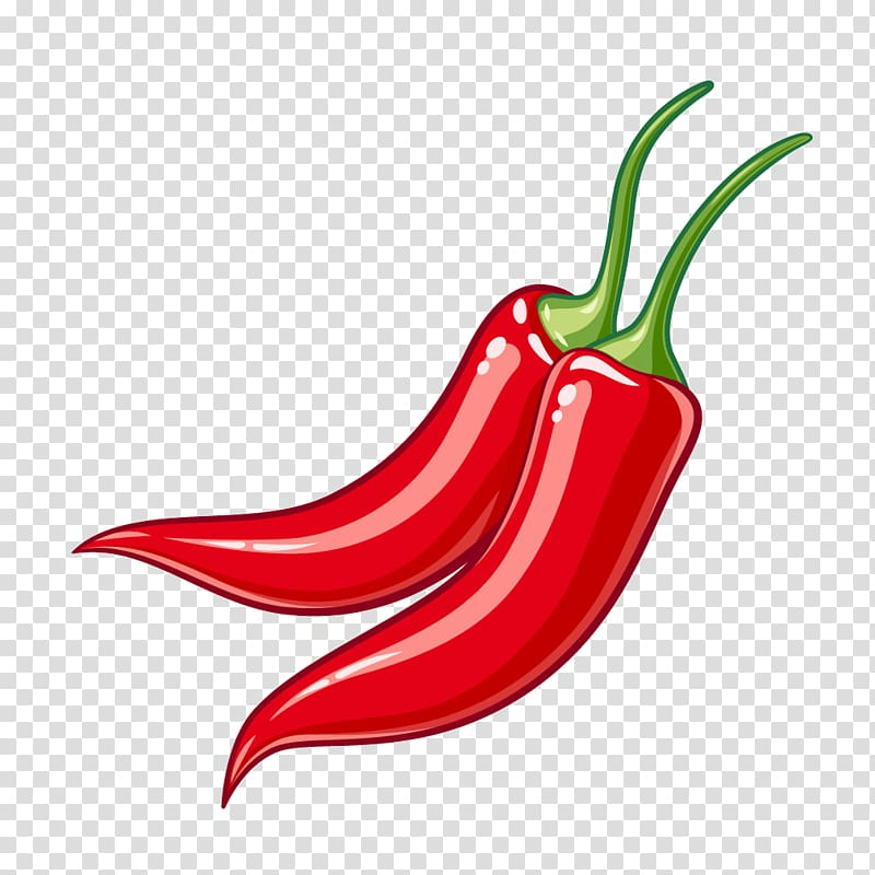 Illustration of two red chili peppers, Serrano pepper Bird.