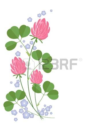 8,660 Clover Flower Stock Vector Illustration And Royalty Free.