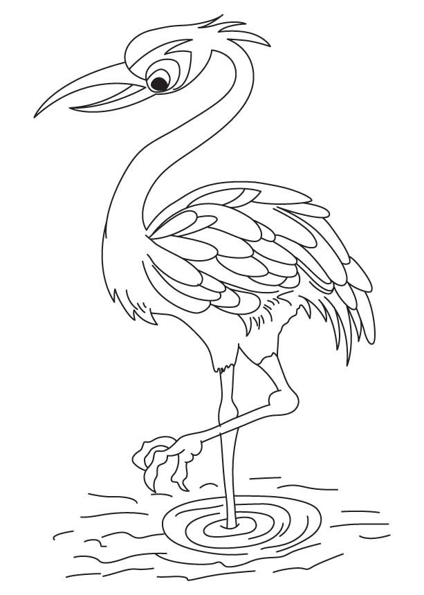 Red crowned crane coloring page.
