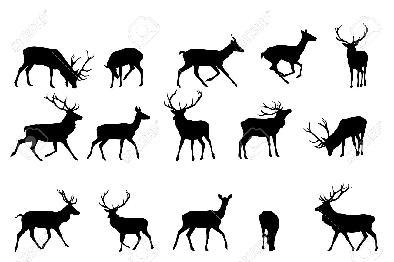 Red Deer Silhouette,vector Collection Royalty Free Cliparts.