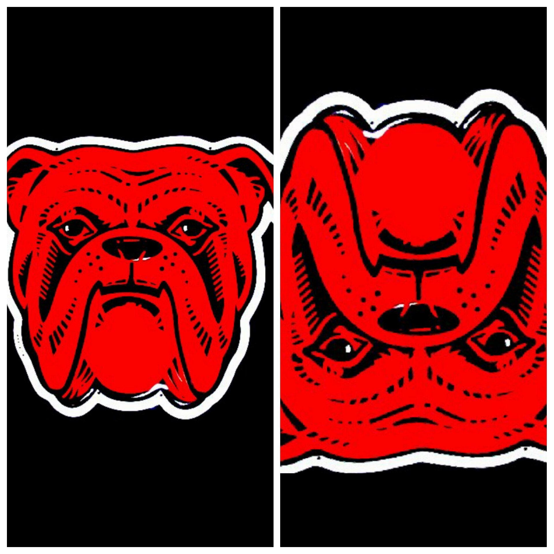 From my youth. Red Dog Logo. Flipped upside down. Cover the.