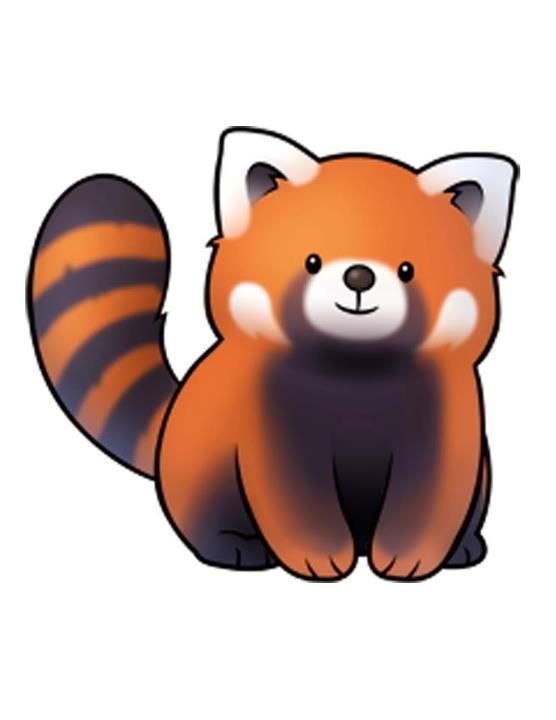 Chubby little red panda..