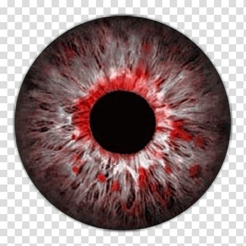 Red and black eye illustration, Eye Lens Color Iris, vektor.