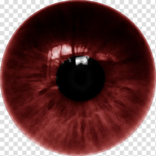 Human eye Iris Lens Color, dente transparent background PNG.
