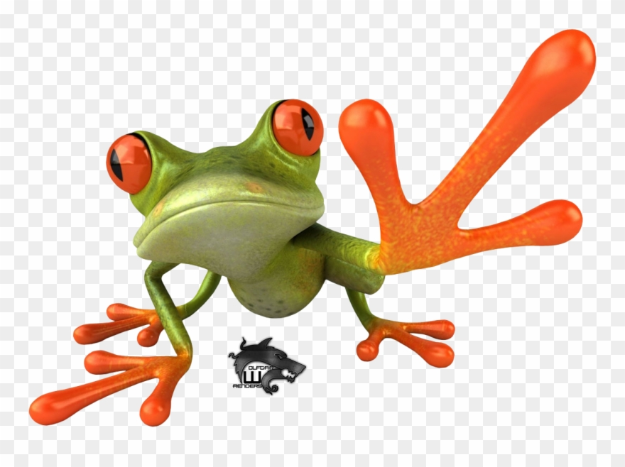 Red Eyed Tree Frog Clipart Transparent.