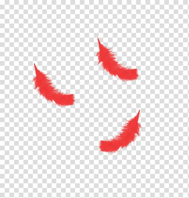 Red Feather transparent background PNG clipart.