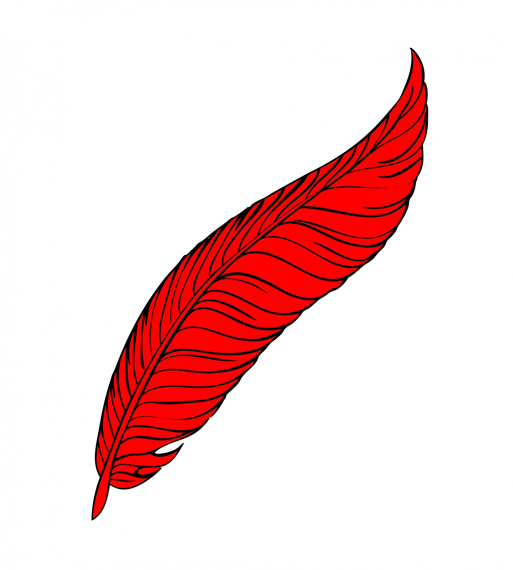 Red Feather Line Art Free Stock Photo.