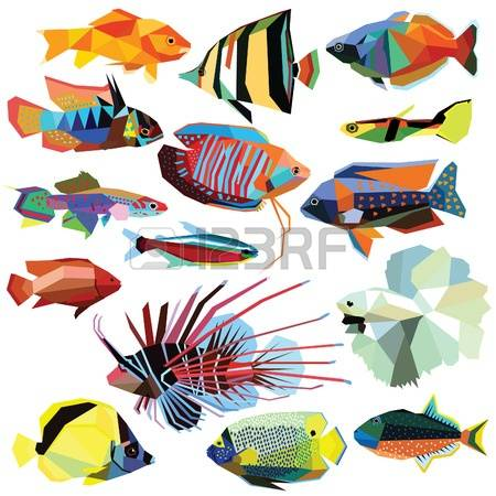 Firefish Images & Stock Pictures. Royalty Free Firefish Photos And.