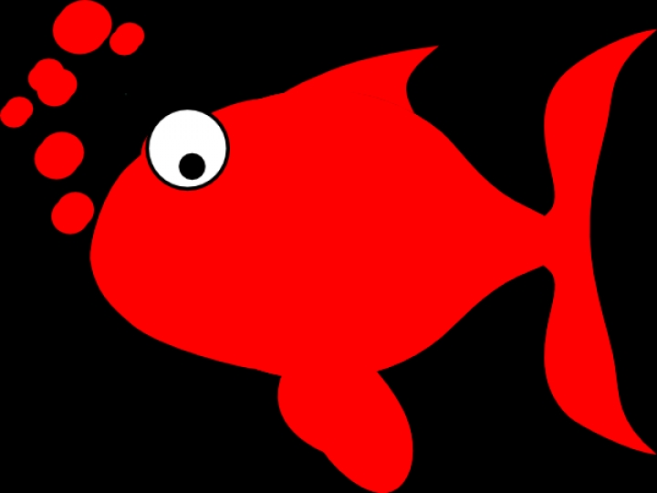 Red Fish Clip Art At Clker Vector Clip Art Online Royalty.