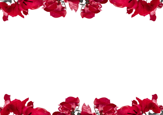 Red Floral Border Png Vector, Clipart, PSD.