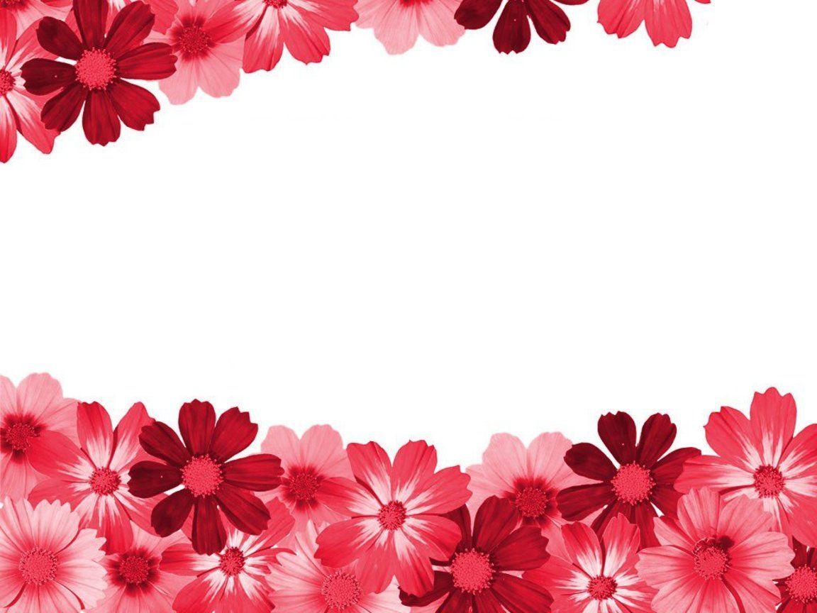 FLOWER BORDER.