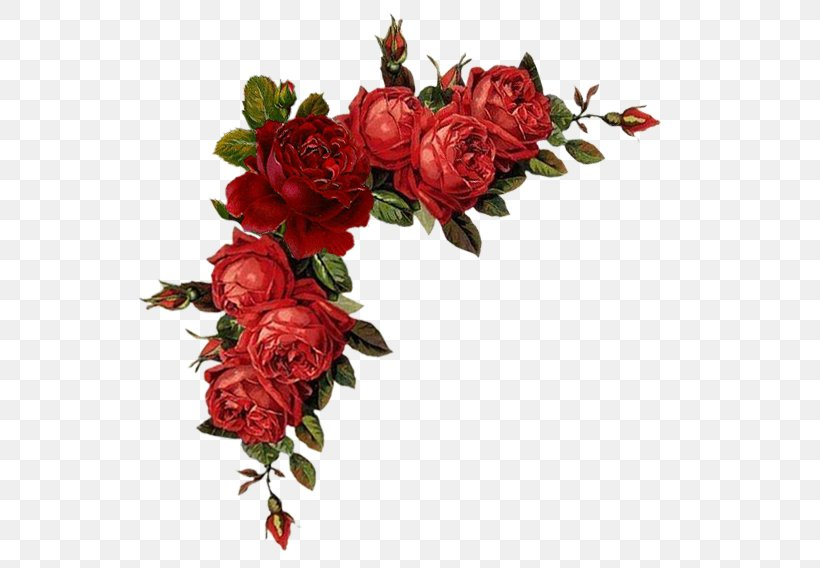 Borders And Frames Flower Red Garden Roses Clip Art, PNG.