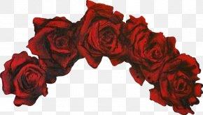 Garden Roses Red Wreath Flower Crown, PNG, 700x401px, Garden.