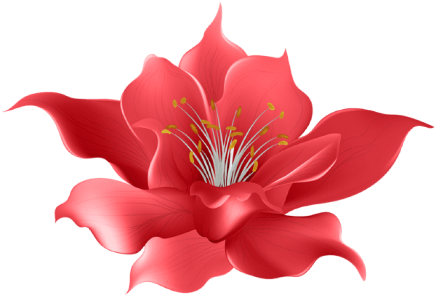 Red Flower Png (+).