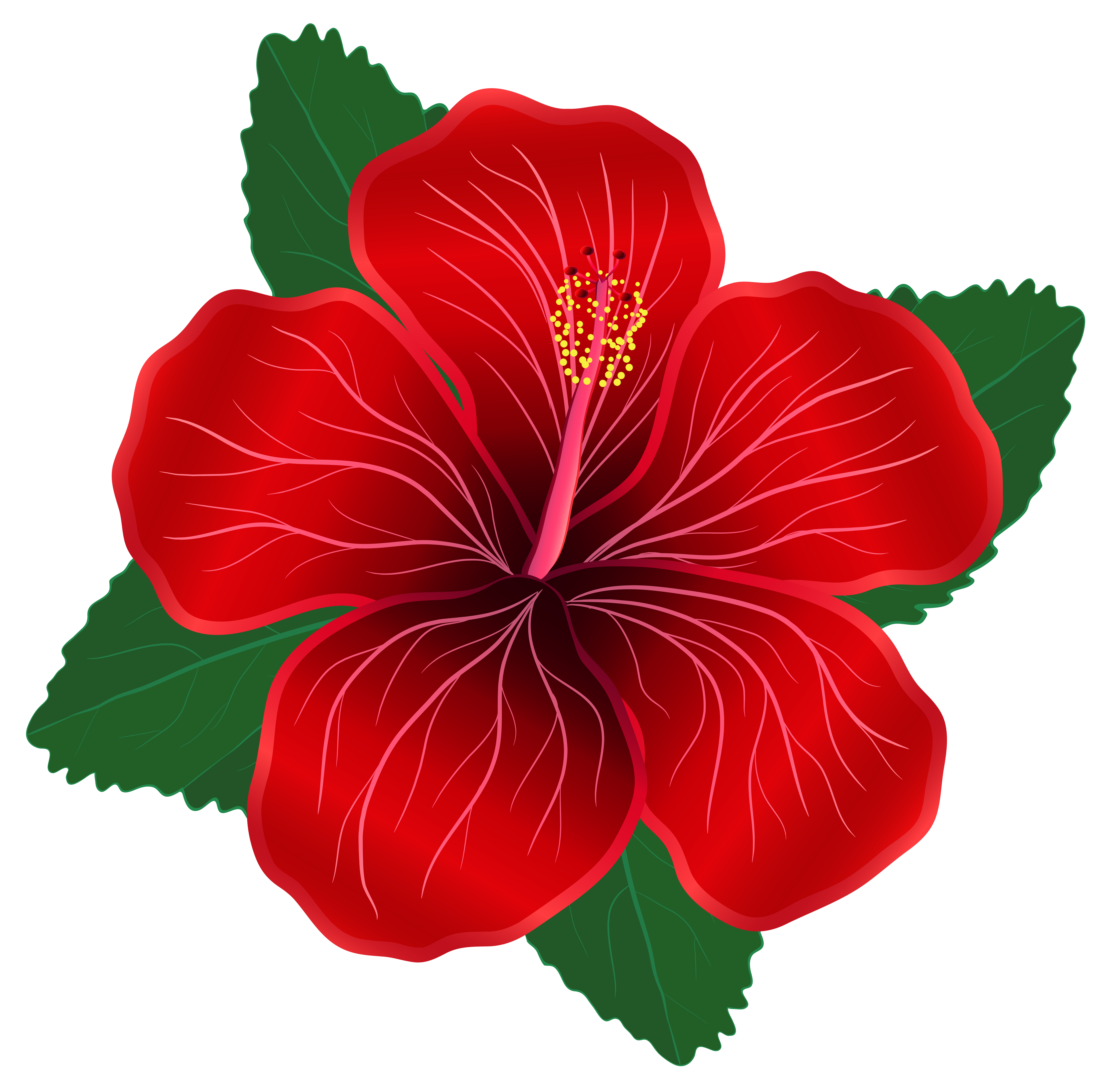 Red Flower PNG Clipart Image.
