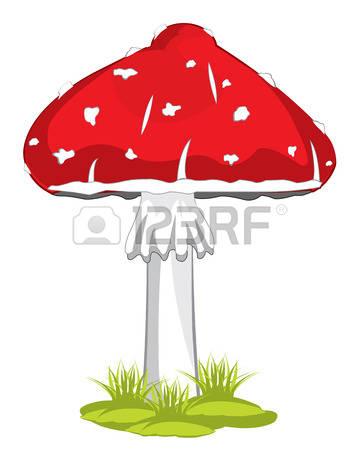 880 Agaric Mushroom Stock Vector Illustration And Royalty Free.