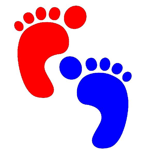 Foot Blue Foot.