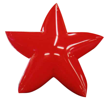 Picture: Star.