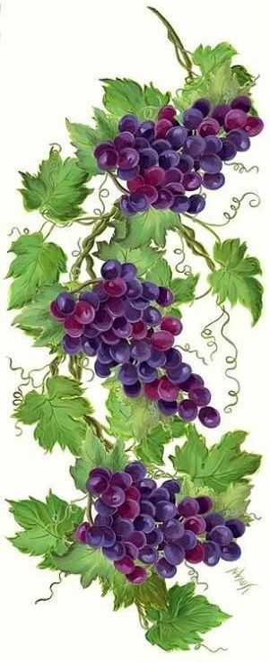 1000+ images about Grape Vine Art on Pinterest.