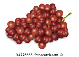 Red grapes Illustrations and Clipart. 1,690 red grapes royalty.