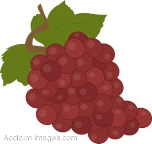 Royalty Free Clipart Illustration of a Bunch of Red Grapes.