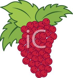 Bunch of Red Grapes Clipart Picture.