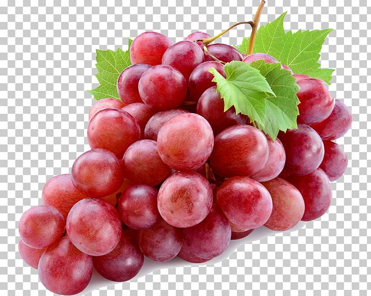 Common Grape Vine Red Wine Red Globe PNG, Clipart, Common.