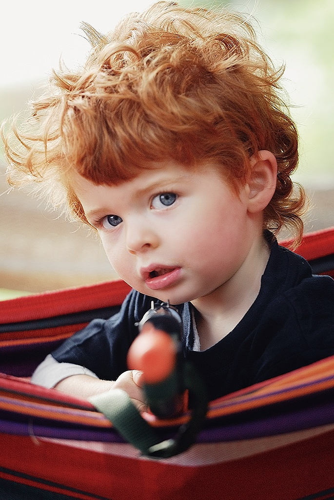 25+ best ideas about Ginger Boy on Pinterest.