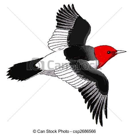 Woodpecker Stock Illustrations. 591 Woodpecker clip art images and.